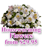 Housewarming Flowers