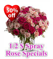 Spray Rose Specials