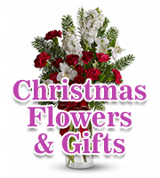 Christmas Flowers & Gifts