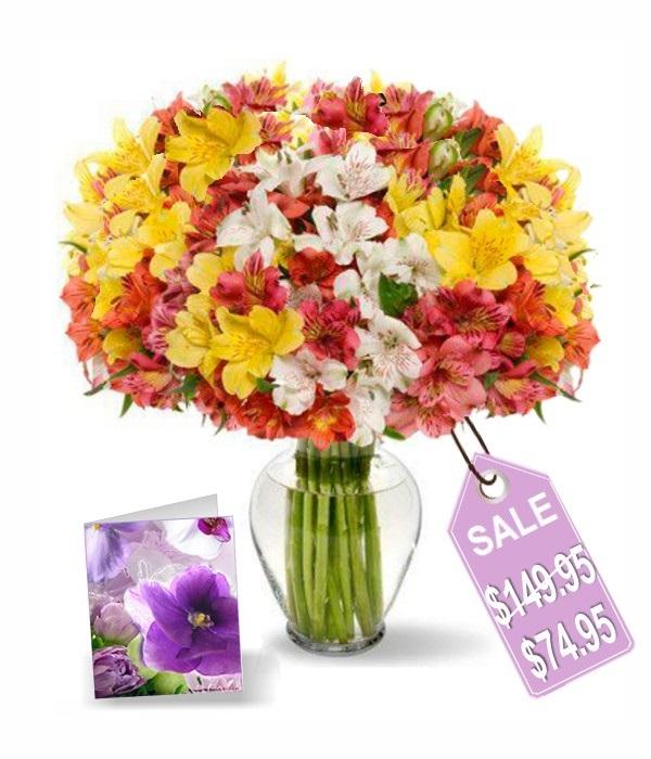 140 Blooms of Alstromeria