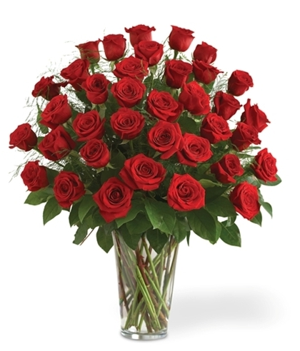 36 Long Stemmed Red Roses