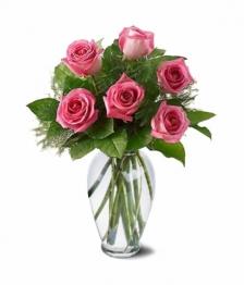 6 Long Stemmed Pink Roses