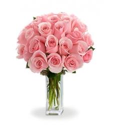 24 Long Stemmed Pink Roses