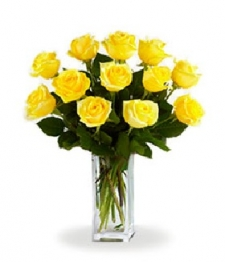 Dozen Long Stemmed Yellow Roses