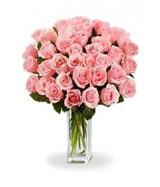 36 Long Stemmed Pink Roses