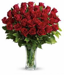 36 Premium Red Roses
