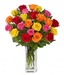 24 Long Stemmed Assorted Roses
