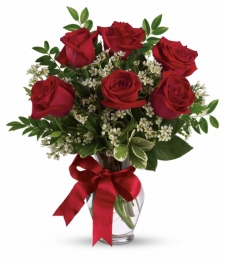 6 Long Stemmed Red Roses