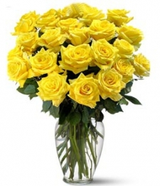 24 Long Stemmed Yellow Roses