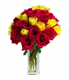 24 Long Stemmed Red and Yellow Roses