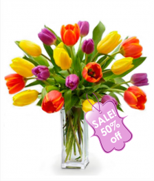 20 Assorted Tulips