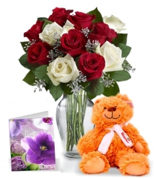 12 Christmas Roses, Card & Teddy