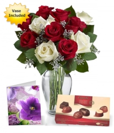 12 Christmas Roses, Card, Chocolates & Vase