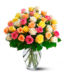 36 Long Stemmed Assorted Roses