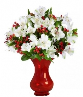 100 Blooms of Holiday Alstroemeria