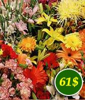 Flowers for 61$