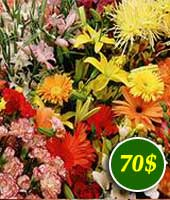 Flowers for 72$