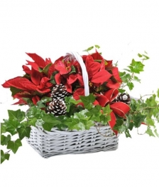 Happy Holidays Planter Basket
