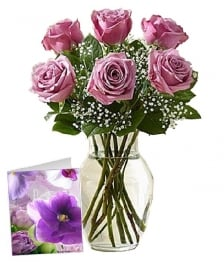 Mothers Day Lavender Roses I