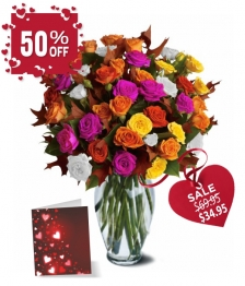 50 Spray Rose Special I