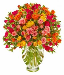 100 Spray Rose Special I