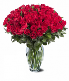 Red Spray Rose Special 100 blooms