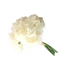 Toss-Flowergirl Bouquet to Match
