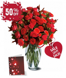 50 Blooms of Red Valentine Spray Roses I