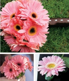 16 Piece Gerbera Wedding Flower Package