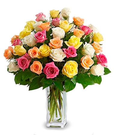36 Long Stemmed Assorted Roses
