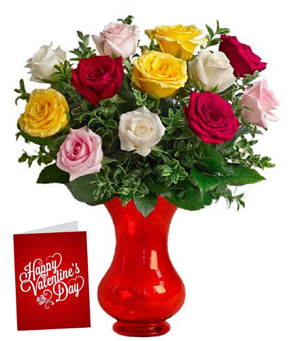 Dozen Mixed Colour Roses & Card
