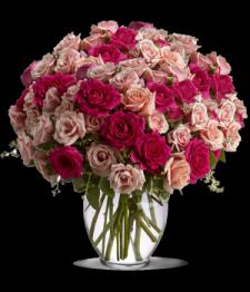 Ravishing Roses II