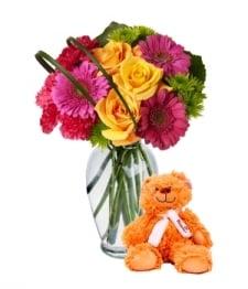 Teddy Bear Beauty