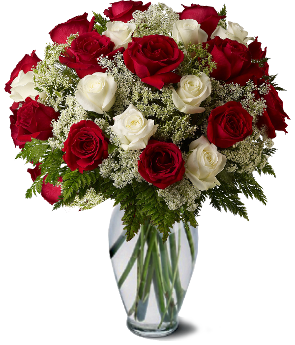 Premium White and Red Roses