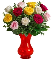 Dozen Long Stemmed Assorted Roses
