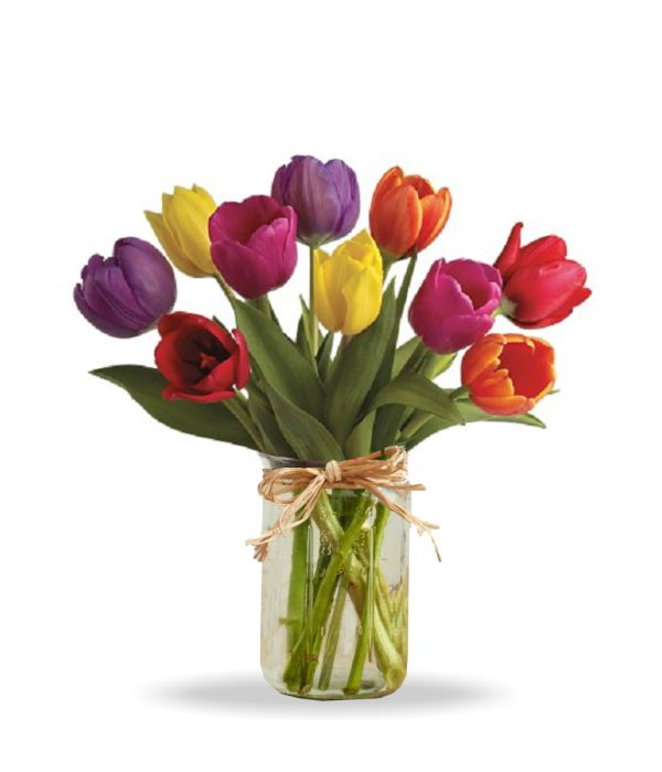 Tulips in Mason Jar