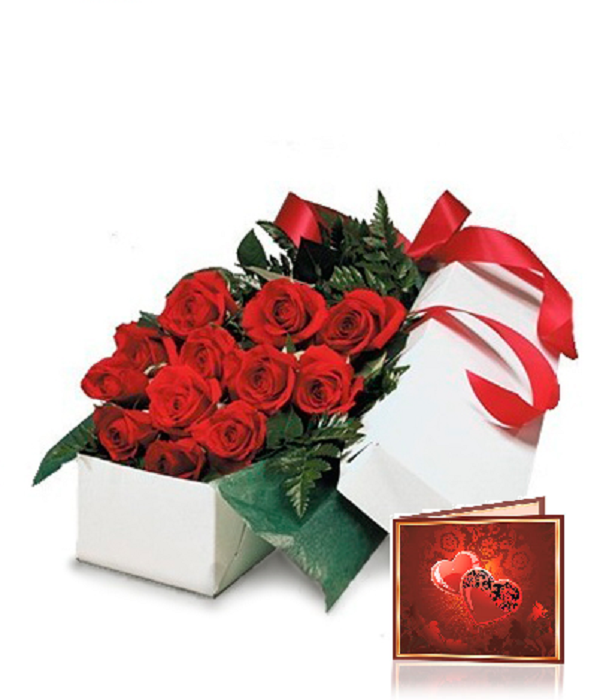 One Dozen Boxed Red Roses