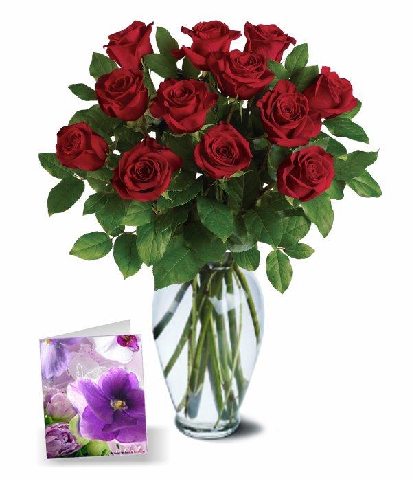 12 Sweetheart Roses I