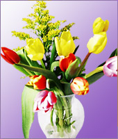 10 Assorted Colour Tulips
