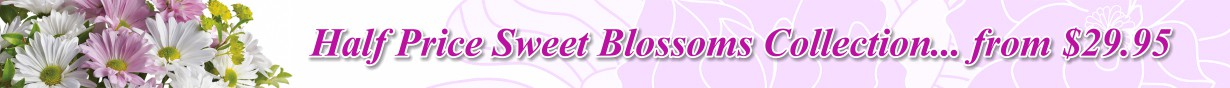 Sweet Blossoms Collection - 50% off -