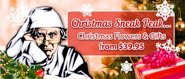 /season-holiday/christmas-flowers-gifts/