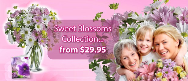 /Season-Holiday/Mother-s-Day-Flowers-Gifts/Sweet-Blossoms-Collection.html
