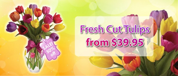 /Fresh-Cut-Tulips.html
